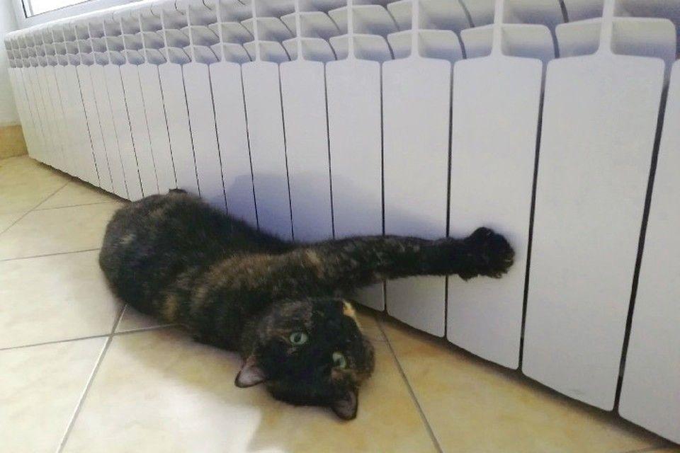 В Крыму система отопления не выдерживает низких температур и слива в квартирах