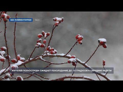 На полуострове наступила русская зима: Крым засыпало снегом