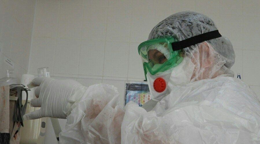 Коронавирус выявлен в Севастополе у 95 человек за сутки, умерли пятеро