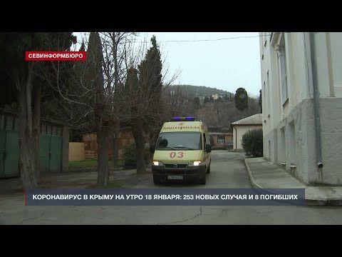 В Крыму за сутки выявили 253 новых случая COVID-19