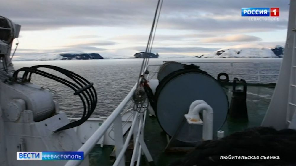 Учёные из Севастополя собираются исследовать воды Антарктики