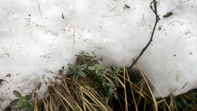 Грядет потепление: какой будет погода в Крыму в четверг