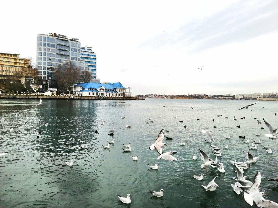 Погода в Крыму на 25 января: дождь и тепло до +14