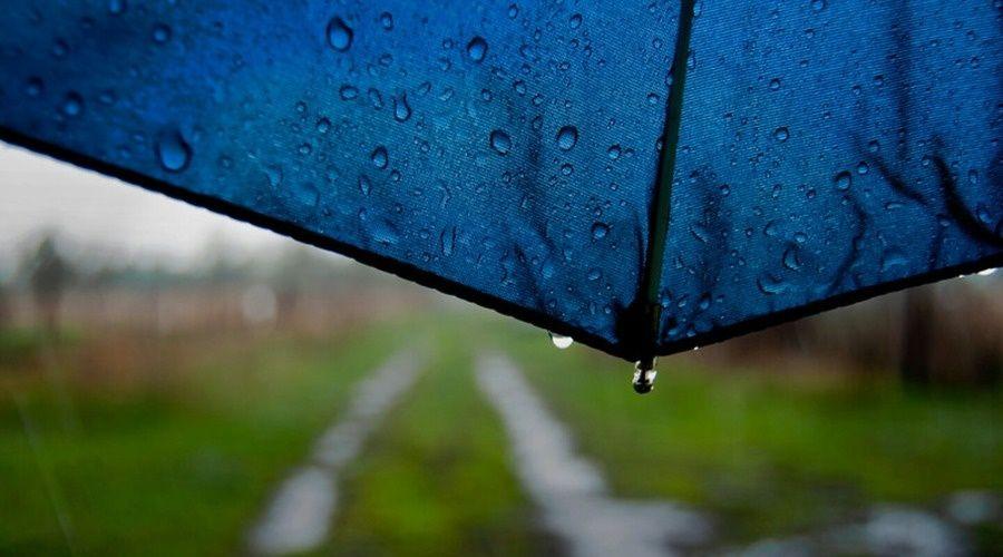 Во вторник в Крыму до 14 градусов тепла, дождь