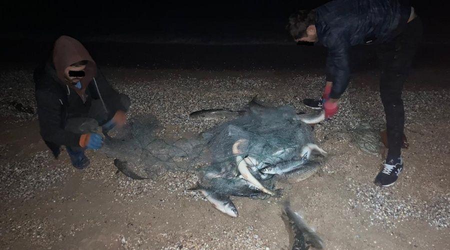 Пограничники с начала года возбудили восемь админдел за незаконный вылов рыбы в Крыму