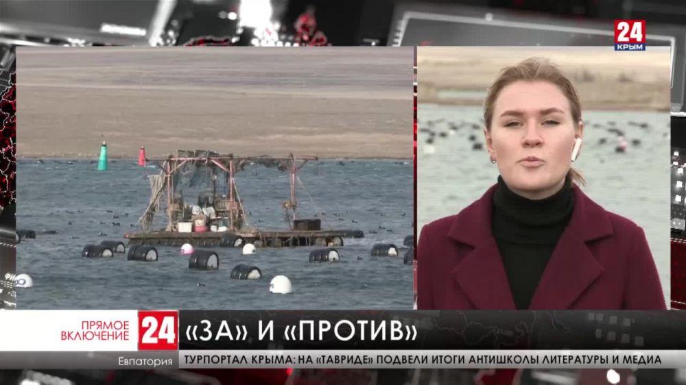 В посёлке Новоозёрное под Евпаторией местные жители выступают против строительства мидийно-устричной фермы