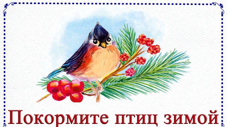 Школьное лесничество «Зеленый патруль» приняло участие в акции «Покормите птиц зимой»