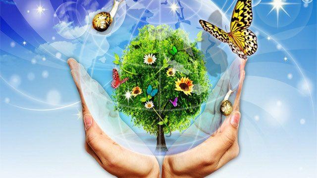 26 января отмечается Всемирный день экологического образования