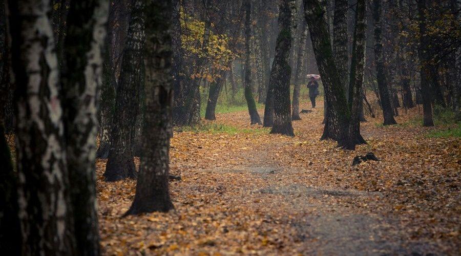 В среду в Крыму до 15 градусов тепла, дождь