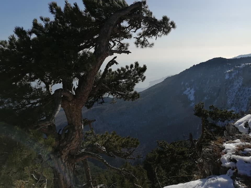 Погода в Крыму на 27 января: дожди и тепло до +15°