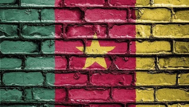 Более 50 человек погибли в Камеруне в ДТП автобуса с грузовиком