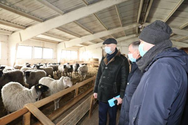 Владимир Константинов посетил объекты сельского хозяйства и транспортной инфраструктуры Советского района
