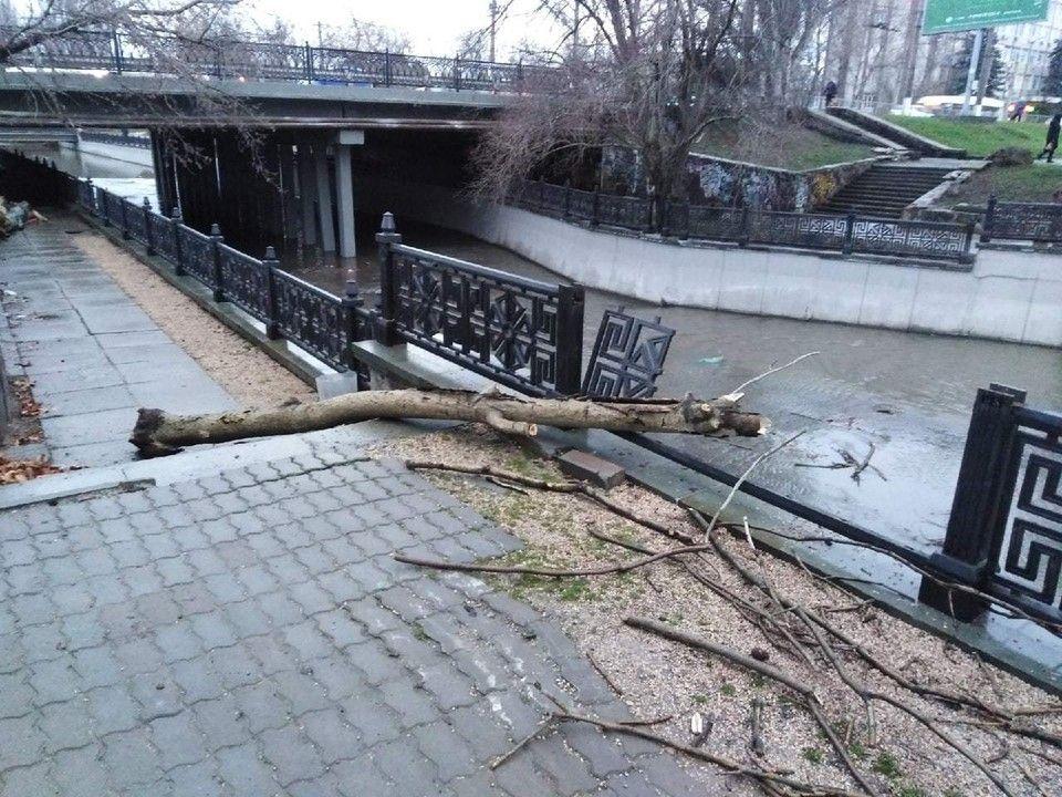 Новая ограда набережной реки Салгир в Симферополе рухнула из-за ветки