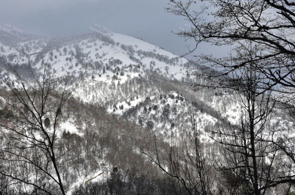 Ялтинский горно-лесной заповедник закрыт для посещения до 14 февраля