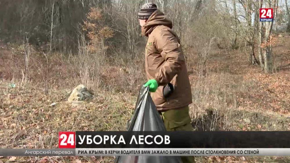 В лесах Крыма стали чаще убирать мусор