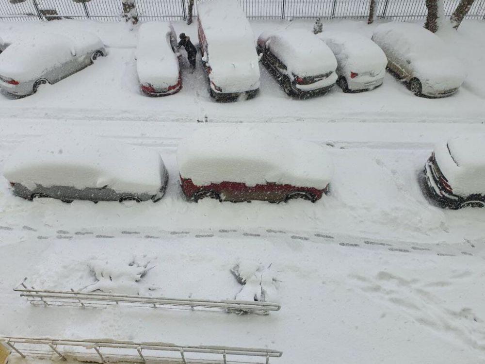 В Крыму автомобилистов просят остаться дома