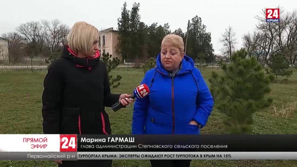 На севере Крыма высадят около ста гектаров лесозащитных полос. Где выращивают саженцы?