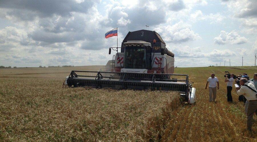 Крымские аграрии планируют в этом году намолотить на 55% больше зерновых