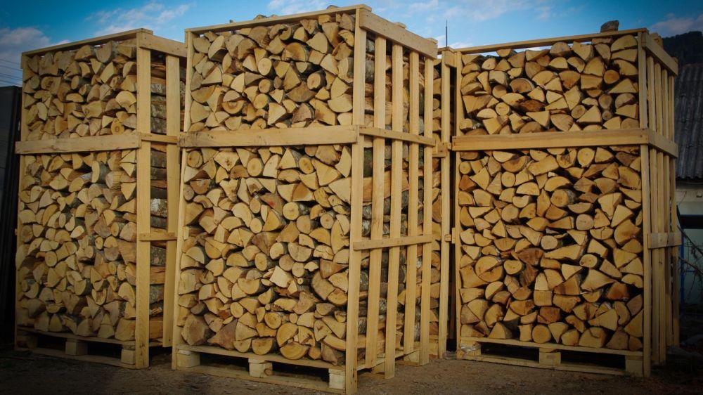 Минприроды Крыма информирует об изменениях требований к учету, переработке и хранению древесины