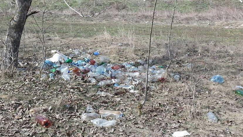 Специалисты ГБУ РК «Красногвардейский районный ВЛПЦ» провели обследования лесополос и несанкционированных свалок мусора в Красногвардейском районе на предмет наличия трупов животных и биологических отходов