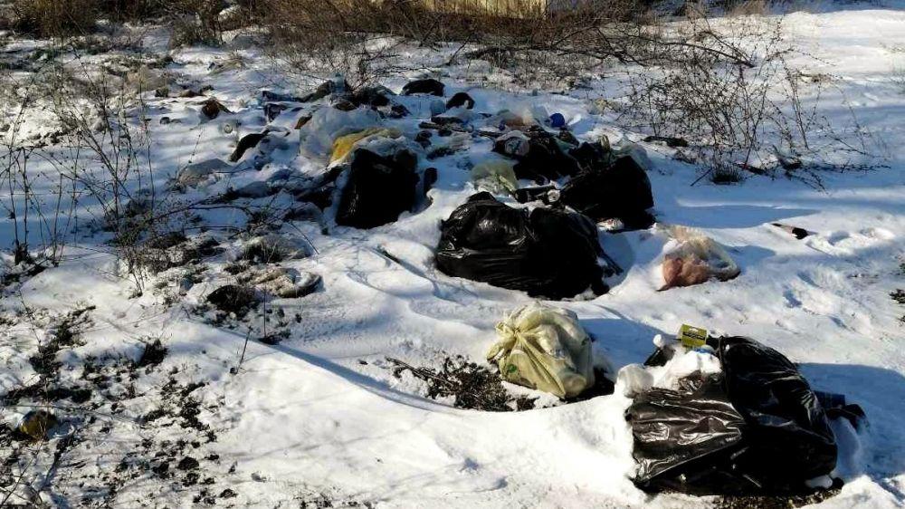 Госинспекторы Минприроды Крыма ликвидировали несанкционированную свалку в Раздольненском районе