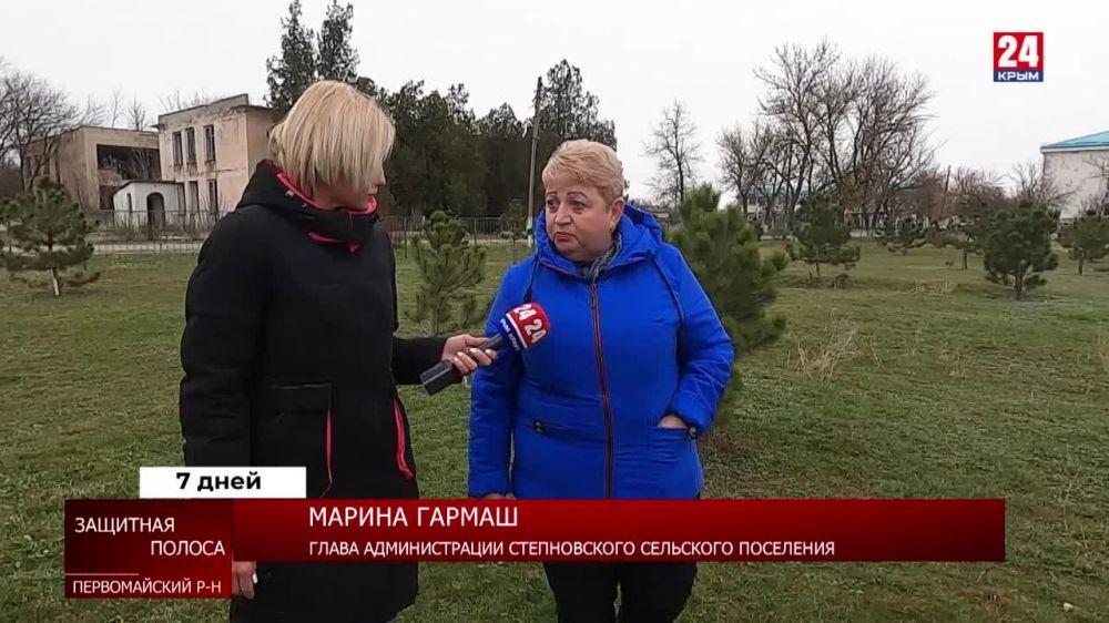 Лесополосы Крыма давно нуждаются в обновлении