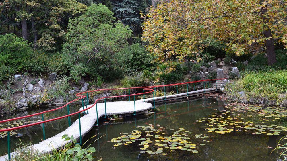 Минприроды Крыма дает разъяснения, кающиеся посещения Парка-памятника садово-паркового искусства «Форосский»