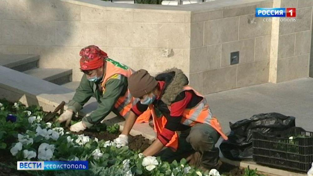 В Севастополе 1 апреля стартует месячник чистоты