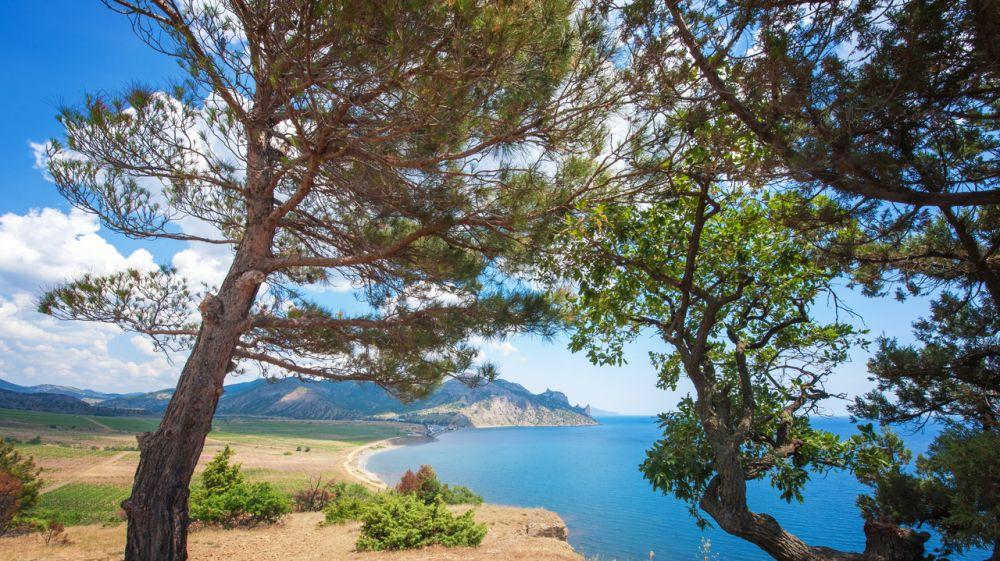 Ряд особо охраняемых природных территорий регионального значения Республики Крым отпраздновал дату создания