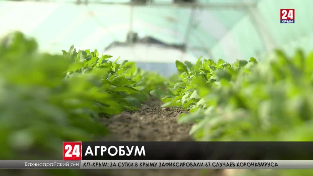 Подвести итоги прошлого года и наметить планы на текущий. Как развиваются сёла в Крыму?