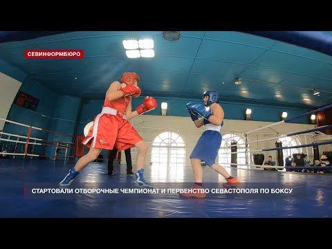 Стартовали отборочные Чемпионат и Первенство Севастополя по боксу