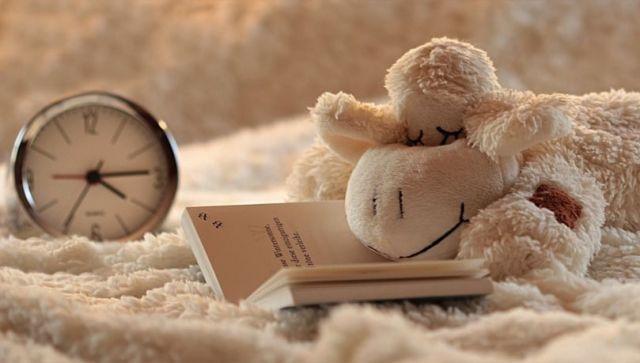 Сомнолог рассказал, о чем говорит желание спать днем