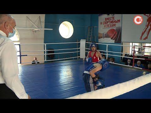 В Севастополе боксеры соревнуются за место в сборной города (СЮЖЕТ)