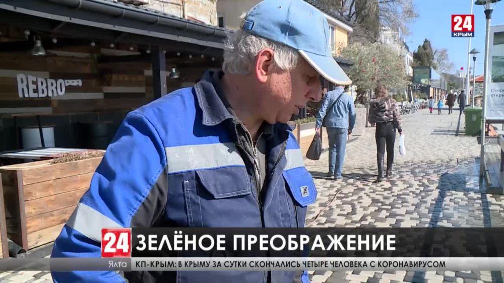 Весенний Крым. Как украшают города Республики?