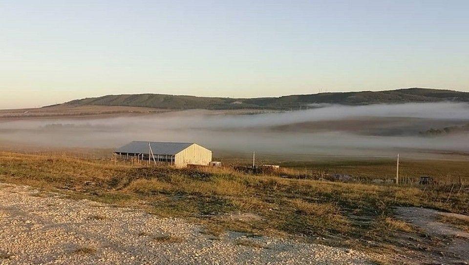 Чиновники объяснили свое желание отобрать землю у крымского сыровара