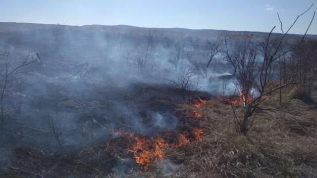 Пожарные час тушили загоревшееся в Симферопольском районе поле