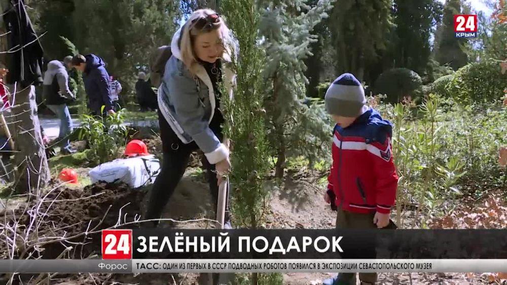В Форосском парке приступили к компенсационной высадке деревьев