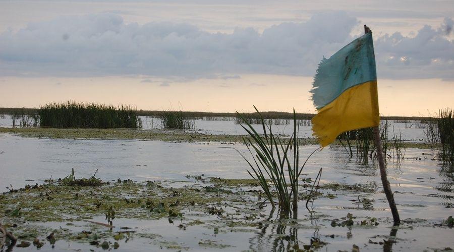 Крымский спикер назвал предательством собственного народа идею внедрять английский язык на Украине