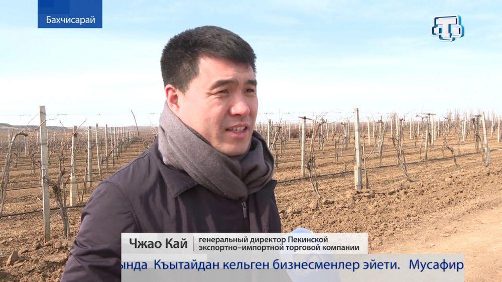 Туризм и виноделие заинтересовали в Крыму китайских бизнесменов
