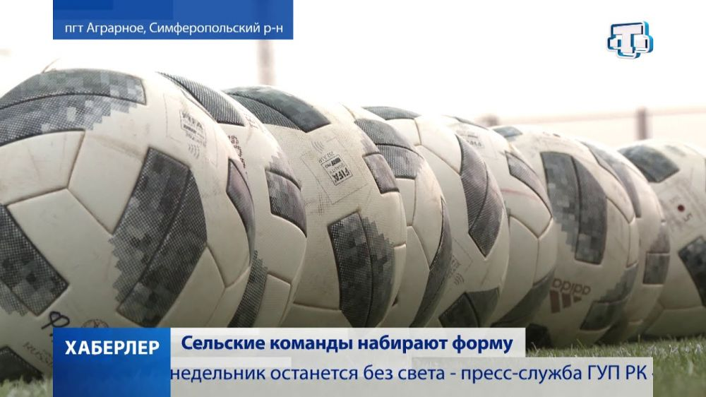 Командам из Симферопольского района вручили футбольную экипировку и мячи