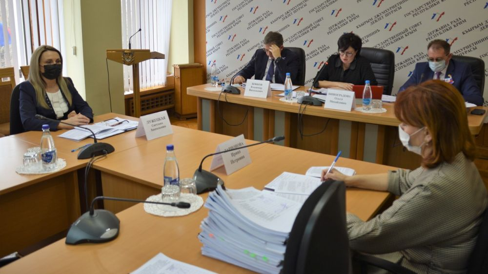 Светлана Лужецкая приняла участие в заседании профильного комитета