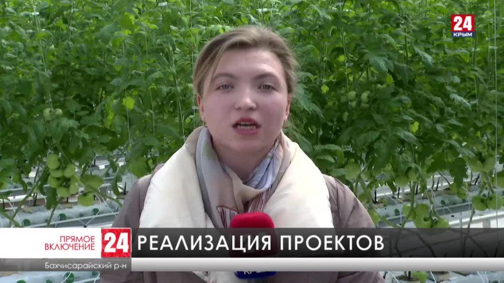 Больше двухсот инвестиционных проектов реализуется в Крыму