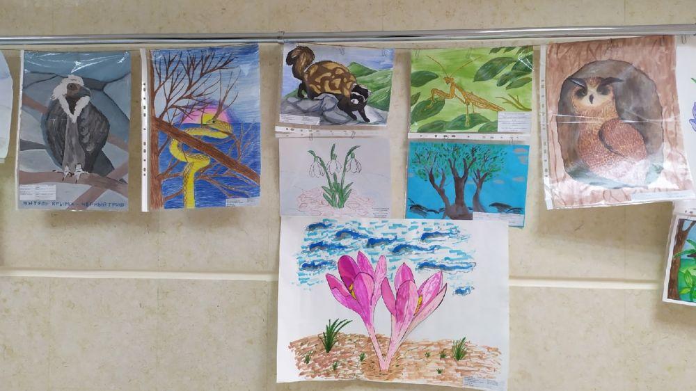 Минприроды Крыма подведены итоги конкурса детского рисунка на тему: «Защитим редких и исчезающих обитателей крымских лесов»