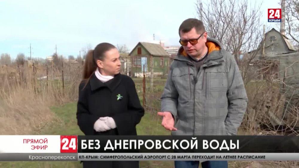 На смену рису – рапс и ячмень. Как север Крыма уже почти семь лет обходится без днепровской воды?