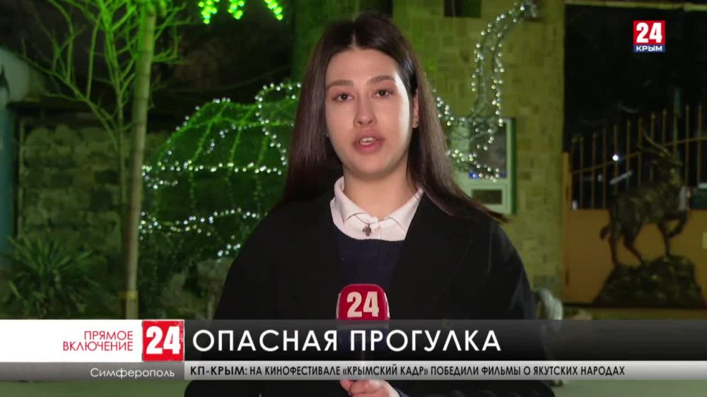 Лошадь откусила палец пятилетней девочке в симферопольском Детском парке. В каком состоянии сейчас находится ребёнок?
