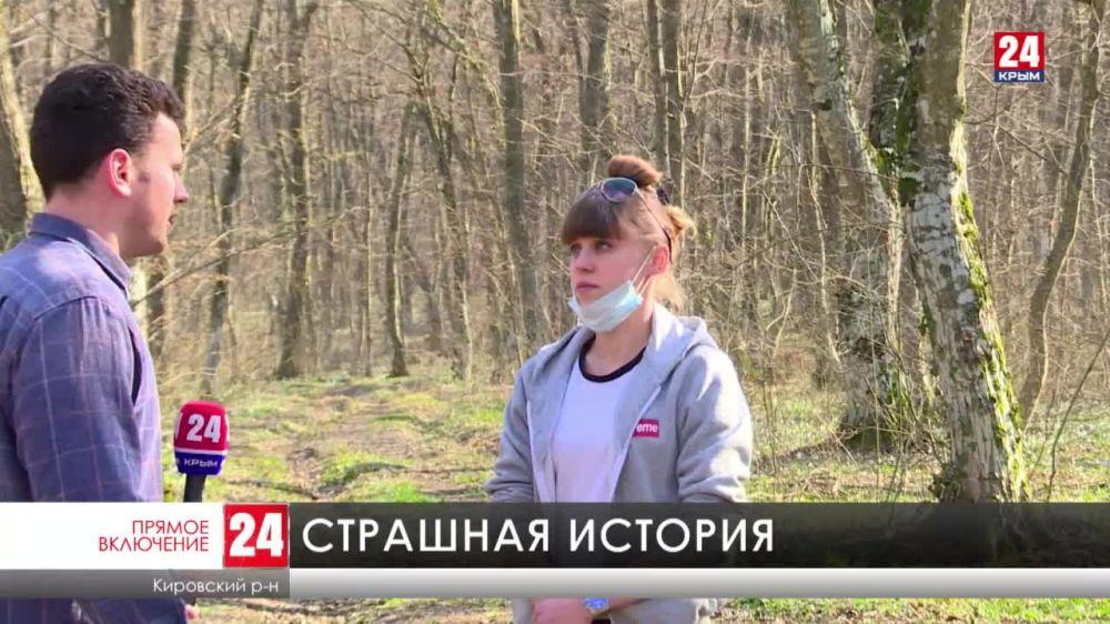 В одном из лесов под Старым Крымом местные жители нашли тела растерзанных собак