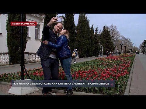В Севастополе к 9 мая на городских клумбах появятся тысячи цветов