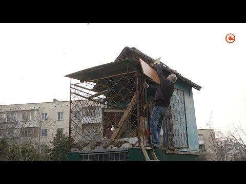 «Живой уголок» в сквере на Степаняна просят сохранить (СЮЖЕТ)