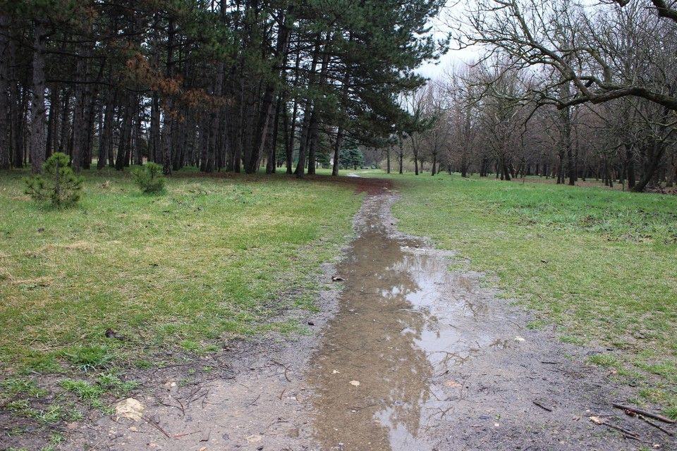 Погода в Крыму на 8 апреля: дождь и тепло до +8