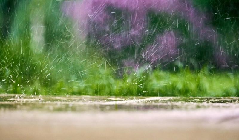Погода 11 апреля: в Крыму и Севастополе небольшой дождь